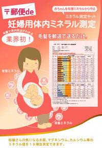 妊婦用体内ミネラル測定(毛髪ミネラル検査)
