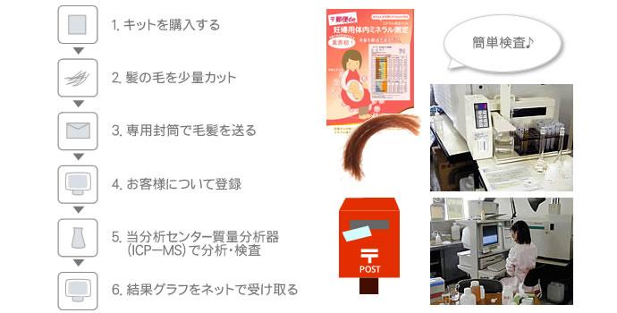 妊婦用毛髪ミネラル測定